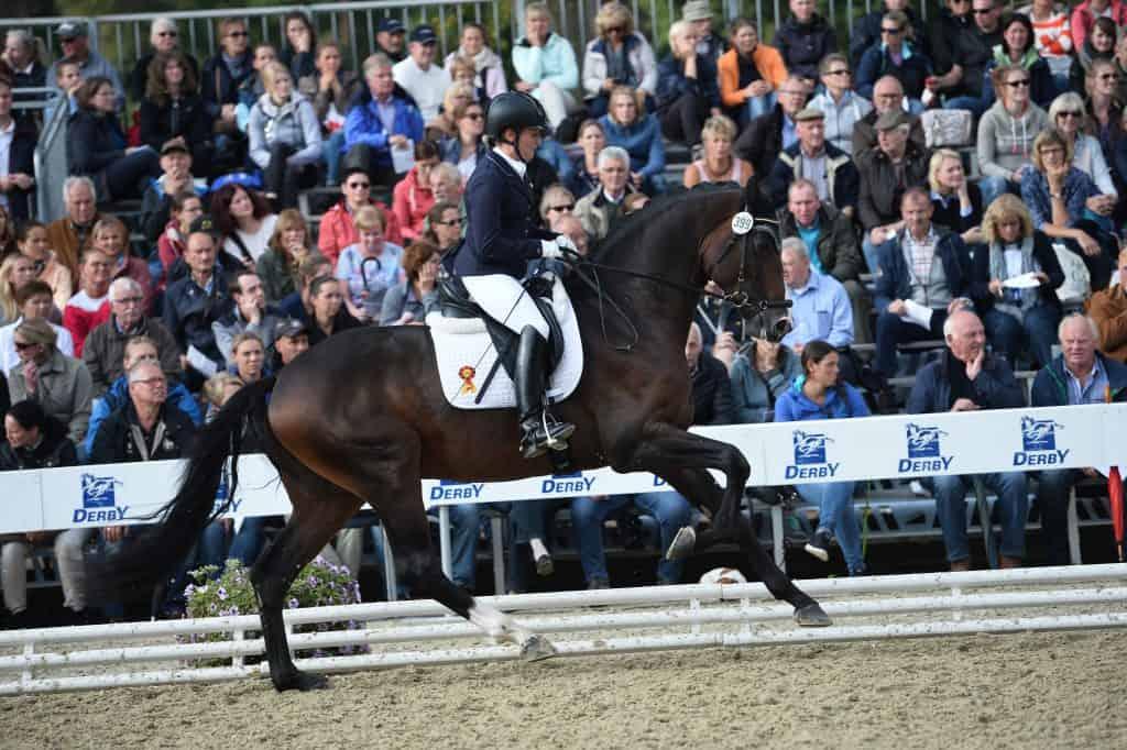 DSP De Sandro Katrin Burger 519 3291 - DSP De Sandro