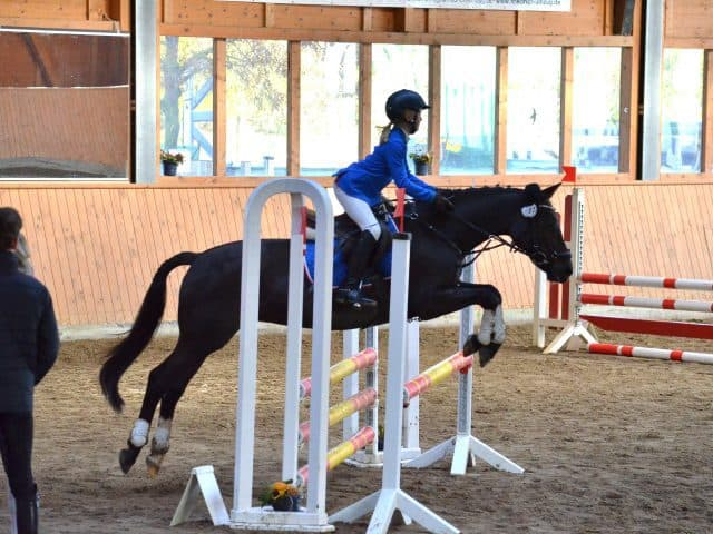 DSC 0097 640x480 - Holiday Courses