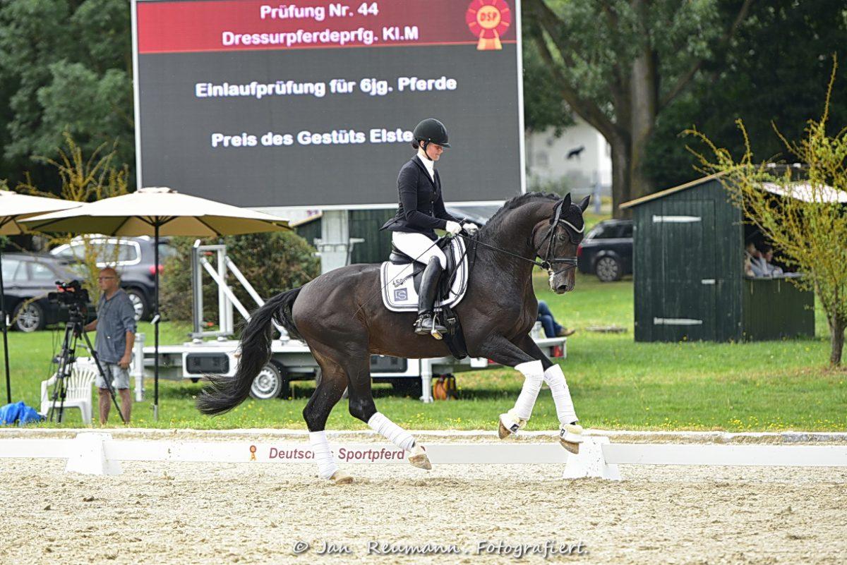 Flashback Carolin Brandt DSP19  REU1950 foto reumann fb scaled - Flashback