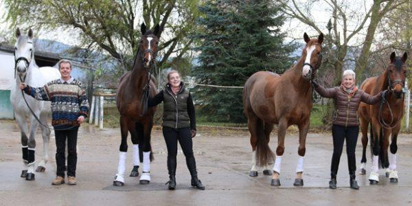 Pferde aus Burghof-Zucht beim Hallenturnier in Eppelheim erfolgreich