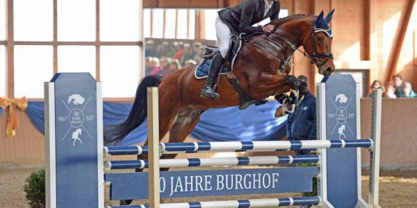 Chilano Blue und Chigaru legen hervorragende Leistungstests ab