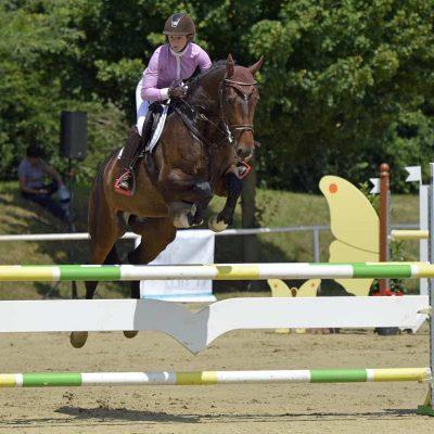 Conella 400x400 - Sportpferde
