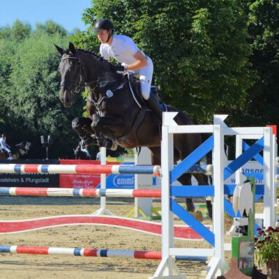 IMG 20190701 WA0065 QUADR 400x400 - Sportpferde