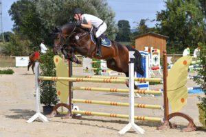DSC 3835 300x200 - Burghof-Pferde glänzen auf dem Heimturnier
