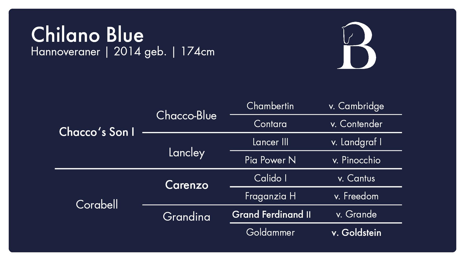 Chilano BlueFull HD - 1. Burghof-Online-Hengstschau