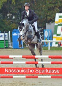 DSC 2516 Hochk 216x300 - 1. Online-Hengstschau auf dem Burghof