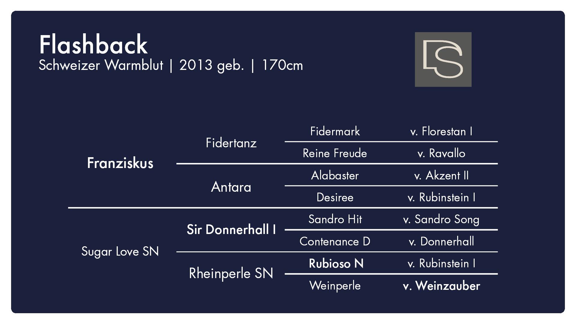Flashback - 1. Burghof-Online-Hengstschau
