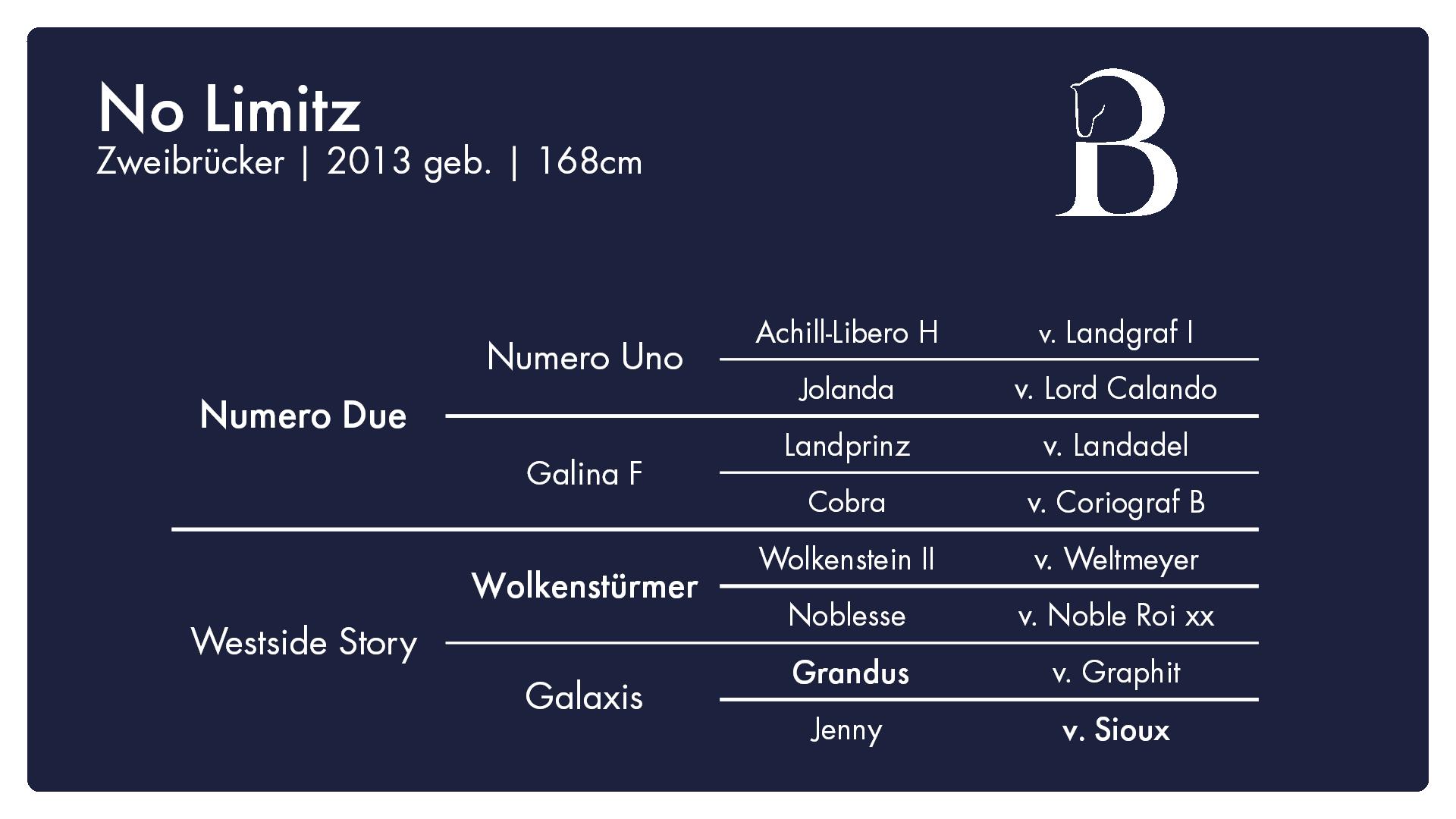 No Limitz - 1. Burghof-Online-Hengstschau
