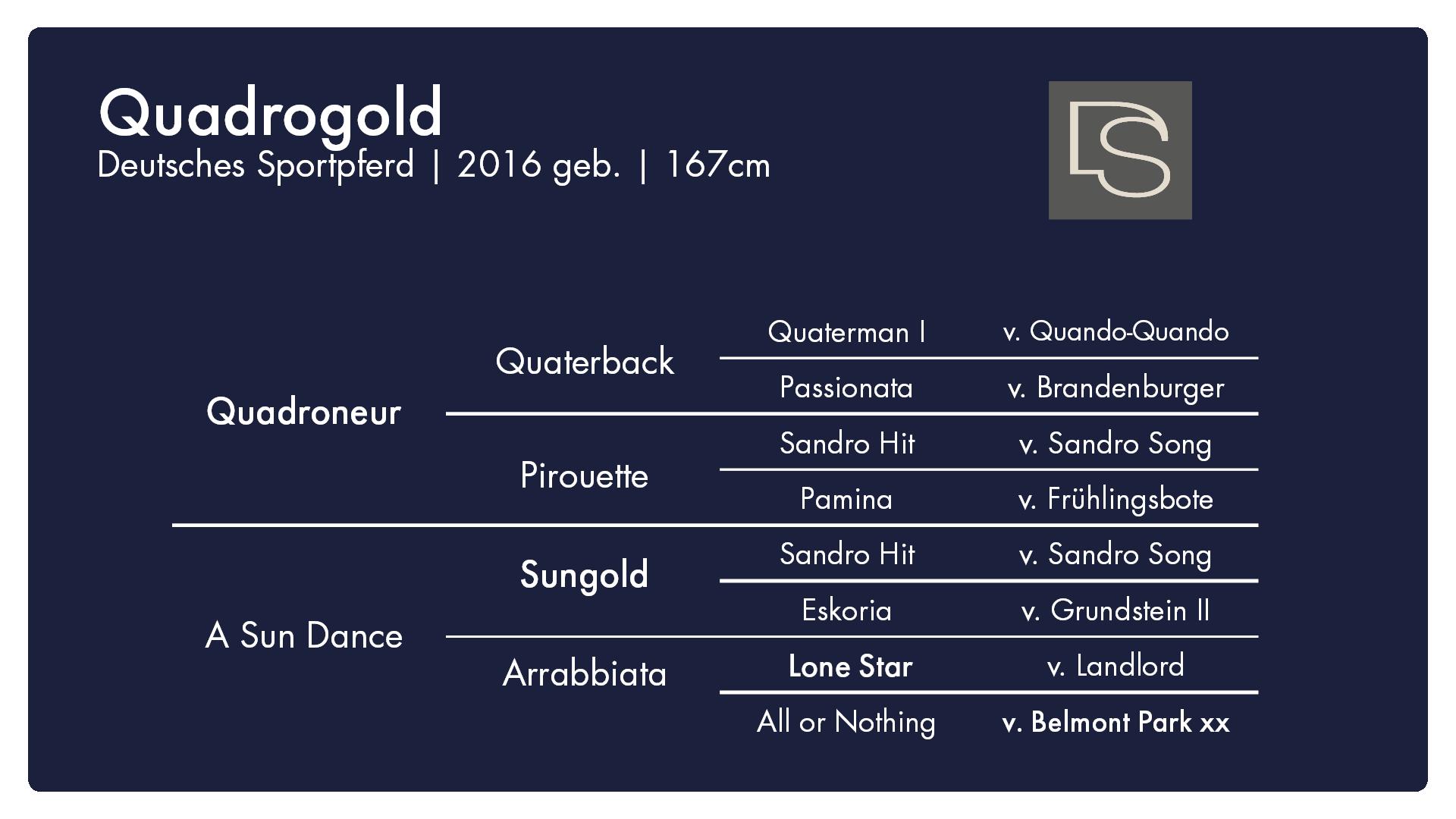 Quadrogold - 1. Burghof-Online-Hengstschau